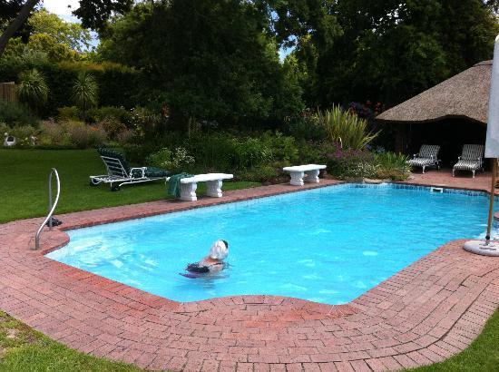 جلين آفون لودج: het zwembad