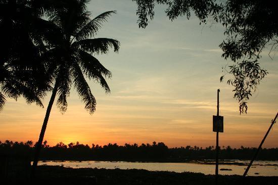 Thykattussery, India: great sunsets