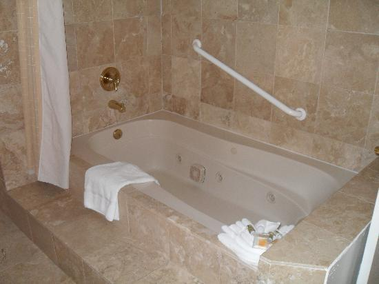 Holiday Inn Laguna Beach: Bath