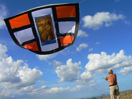 B&B Aquilone - Villa Liberty : Volo di aquiloni giganti