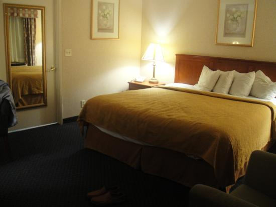 Quality Inn Near Hollywood Walk of Fame: king size comfy bed