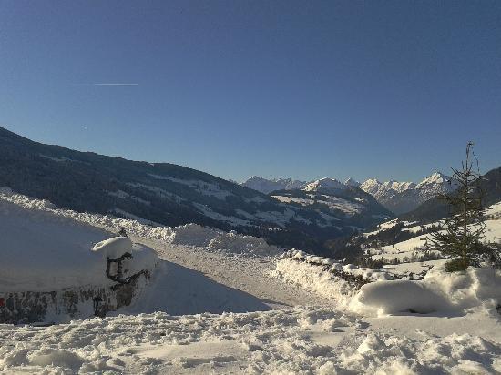 Ausblick von der Terrasse vom Bergwald