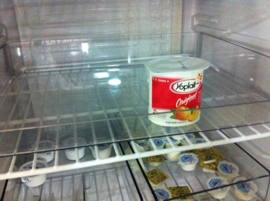 Comfort Inn: Yogurt choices