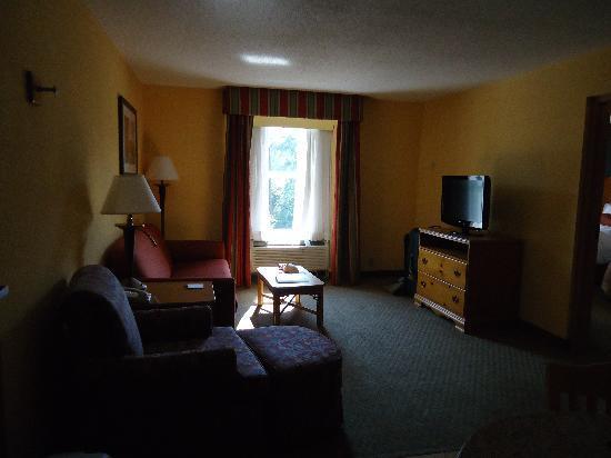 Hampton Inn & Suites Williamsburg-Richmond Rd.: living room area