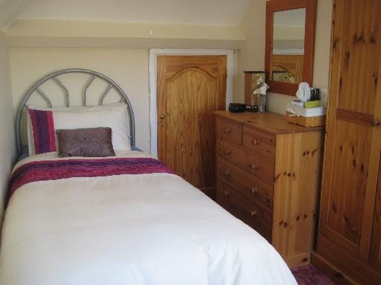 Cynhynfa Country Guest House: Single Room