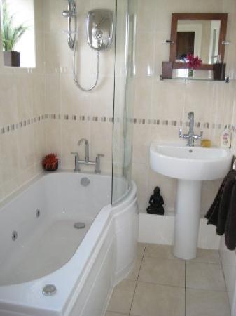 Cynhynfa Country Guest House: Shared Bathroom