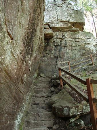 Pikeville, TN: Trail back up from Fall Creek Falls - Rock Steps