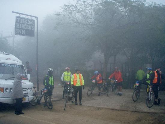 morning fog at The Birder's Inn