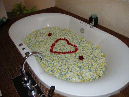 The Samaya Bali Ubud: honeymoon welcome...so many beautiful details