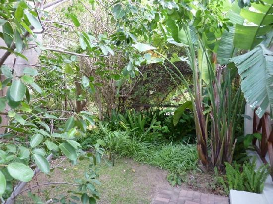 Malherbe Guesthouse : Secret garden