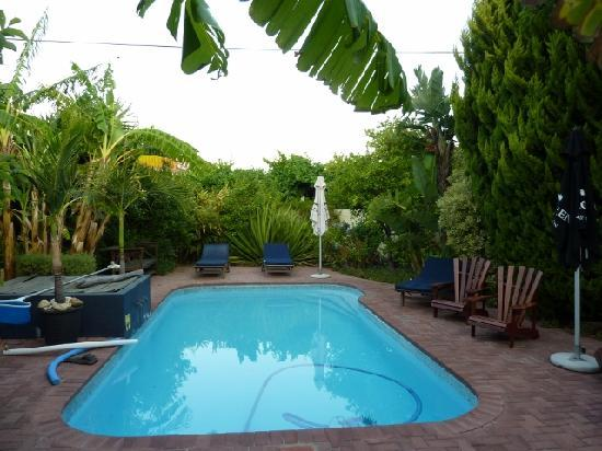 Malherbe Guesthouse : Pool