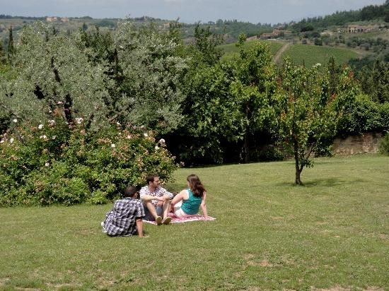 La Chiara di Prumiano: The backyard overlooking vineyards