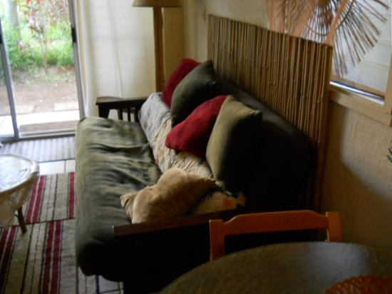 Prince Kuhio Condos: Lounge area