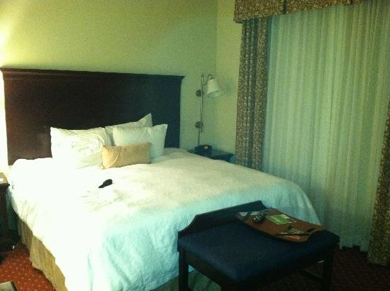 Hampton Inn & Suites Washington-Dulles International Airport: View towards the King size Bed