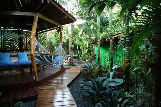 Physis Caribbean Bed & Breakfast: the garden