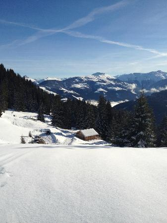 Pension Franzl: Top of the mountain