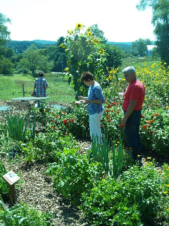 Inn at Valley Farms: Guests exploring our extensive organically managed gardens