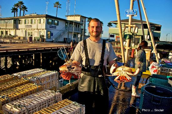 Santa Barbara, Californië: Fisherman's Catch