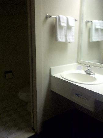 Sleep Inn Tanglewood: Small bathroom with shower only.