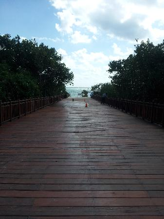 Paradisus Playa Del Carmen La Esmeralda : Boardwalk to Beach