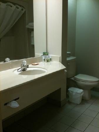 Lakeview Inn and Suites Brandon : good size bathroom