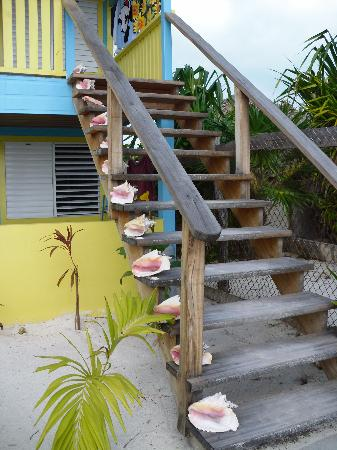 Colinda Cabanas: Conchs up our steps