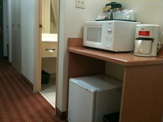 Lakeview Inn and Suites Brandon : unplug the fridge for a quiet sleep