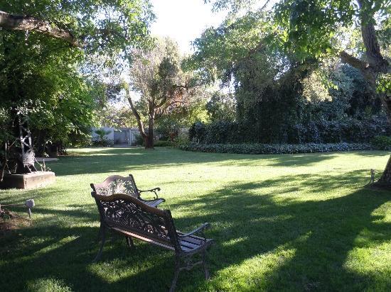 Ryde Hotel: back garden area