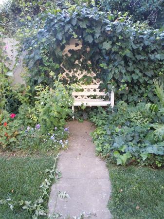 Ryde Hotel: Garden