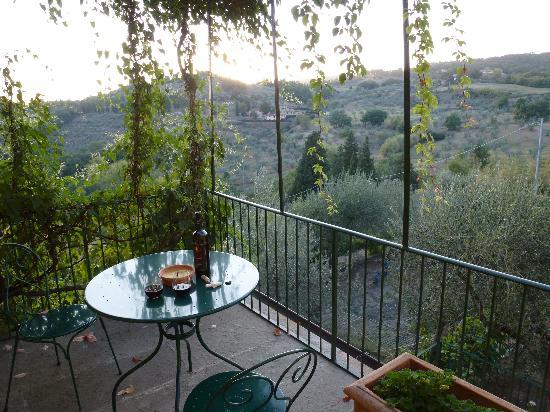 Villa Di Campolungo Agriturismo : private patio