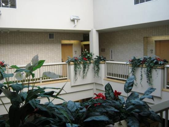 Hampton Inn Santa Cruz: Interior Atrium