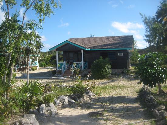 Sammy T's Beach Resort: Cabin