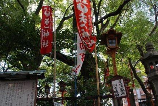 Nyakuichi Shrine: 楠木に触れてパワーをもらっている人もいました
