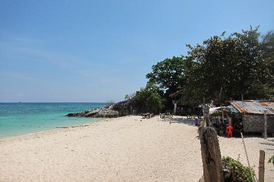 Idyllic Concept Resort : la plage devant l hotel