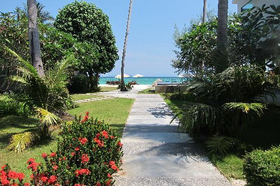 Idyllic Concept Resort: idyllic resort
