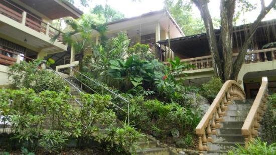 Foto De Jungle Beach Hotel At Manuel Antonio Parque Nacional