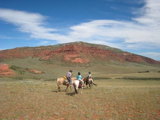 Laramie River Dude Ranch: LRR Beauty