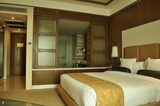 Crowne Plaza Today New Delhi Okhla: The room I stayed in