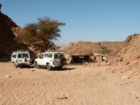 Sinai Voyage: На выходе из каньона нас нова ждал джип