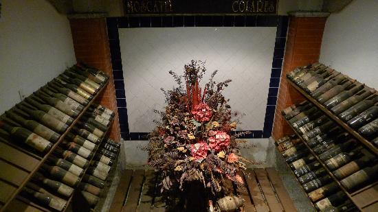 Wine Museum : Wine Cellar - some old stuff!
