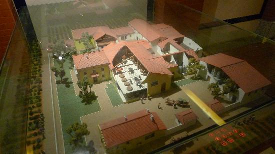 Wine Museum : Winery/Vineyard - Exhibit