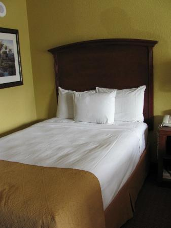 Rosen Inn at Pointe Orlando: Clean and attractive bedding