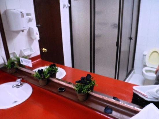 Lleras Park Hostal: Bathroom attached to private room
