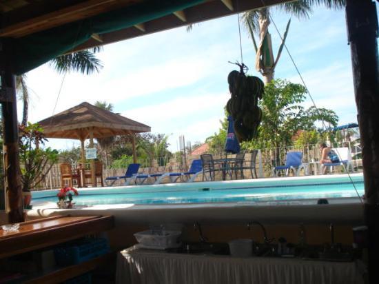 Seastar Inn: View from the bar ....
