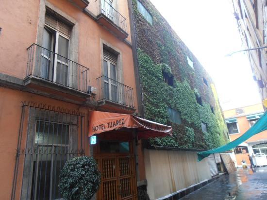 Hotel Juarez: Vue de la ruelle avec étonnant mur végétal
