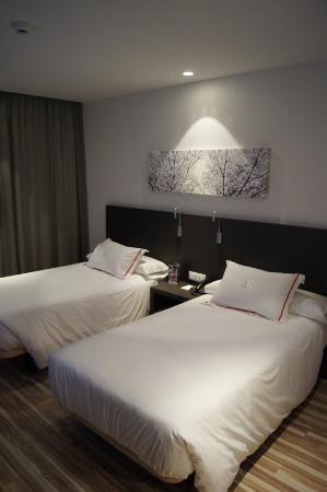 歐洲之星阿里納斯德平托酒店