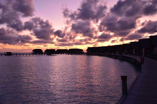 COMO Cocoa Island: Sunrise over the jetty (villas/Dhoni suites at right of jetty surrounding lagoon)