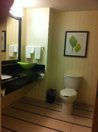 Fairfield Inn & Suites White River Junction: bathroom