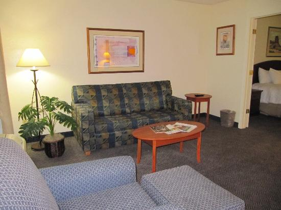 Red Lion Inn & Suites Phoenix-Tempe: Living room