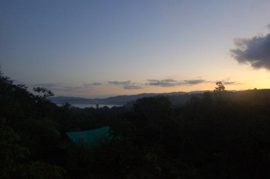 Pura Vista Corcovado Ecocamp: View from tent